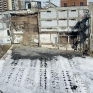 Le potager, centre ville de Montréal, 1999
